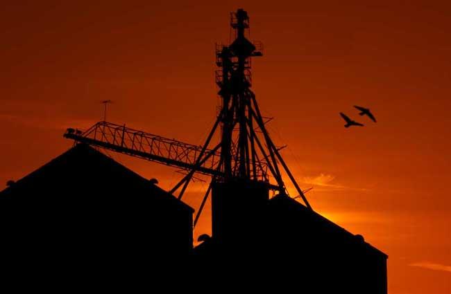 ASABE Publishes Grain Bin Access Standard